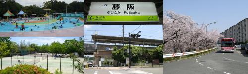top-midasi-fujisaka
